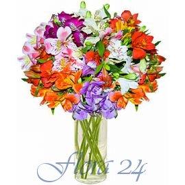 Доставка цветов ирпень заказать цветы с доставкой спб